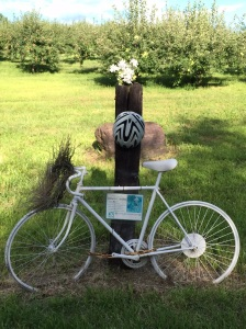 The Ghost Bike marks the time and place where lives were forever altered.